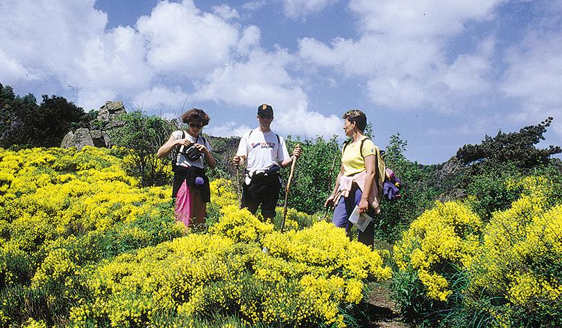 sports et loisirs randonnée vers Prades